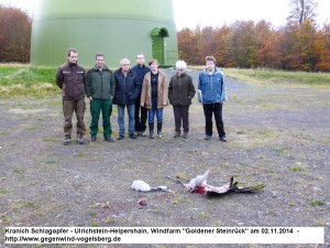 Crane killed by WF in Germany 4